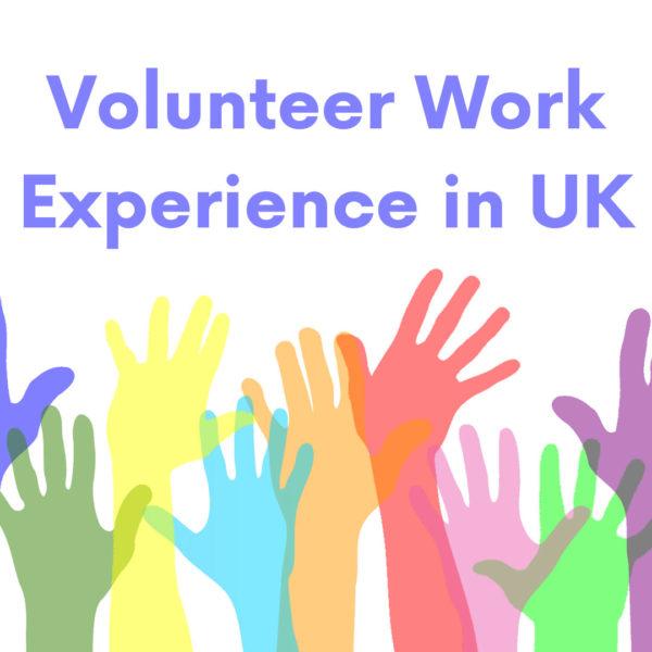 Volunteer Work Experience in UK